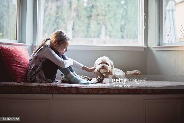 Girl Petting Small Dog Near Window
