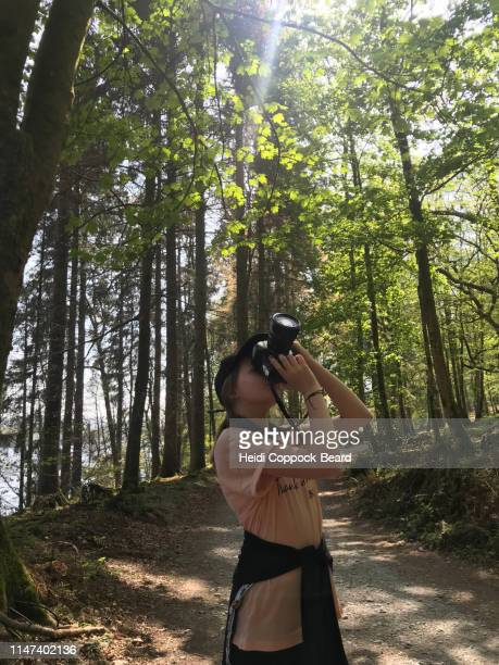girl photographing a forest - heidi coppock beard stockfoto's en -beelden