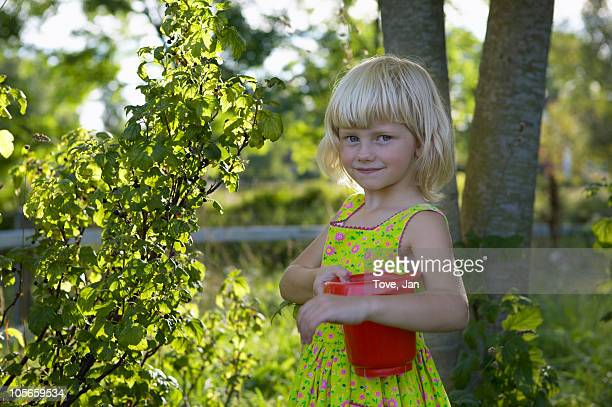 Girl picking berries