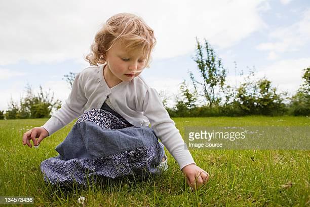Mädchen pflücken Gänseblümchen
