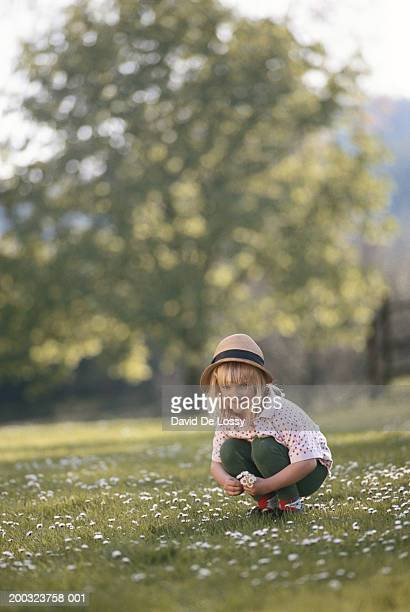 Girl (6-7) picking flowers in field, smiling