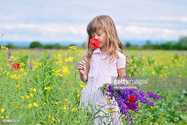 Girl (6-7) picking flowers in meadow