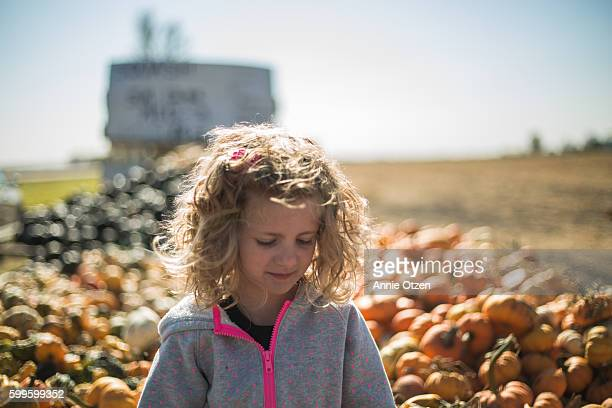 girl picking out pumpkins - girl mound stock pictures, royalty-free photos & images