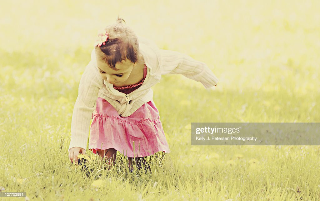 Girl piking  flowers : Stock Photo