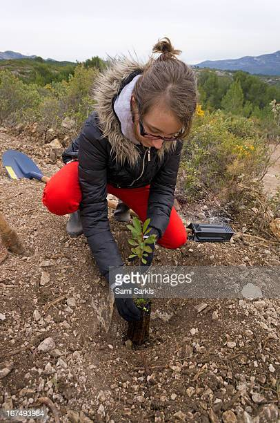 Girl (10) planting young trees in nature