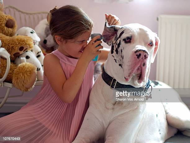 Girl playing at being a Vet to her Great Dane dog