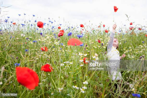 girl playing in field of wildflowers - simple living stock pictures, royalty-free photos & images