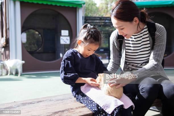 母親とハムスターと遊ぶ女の子 - 動物園 ストックフォトと画像