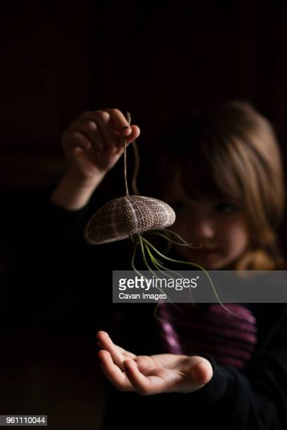 Girl playing with air plant hanging from sea urchin in darkroom
