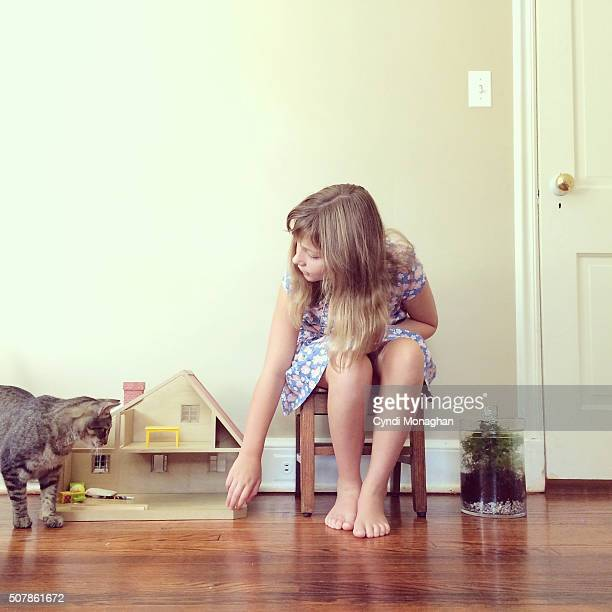 girl playing with cat - hairy girl stock pictures, royalty-free photos & images