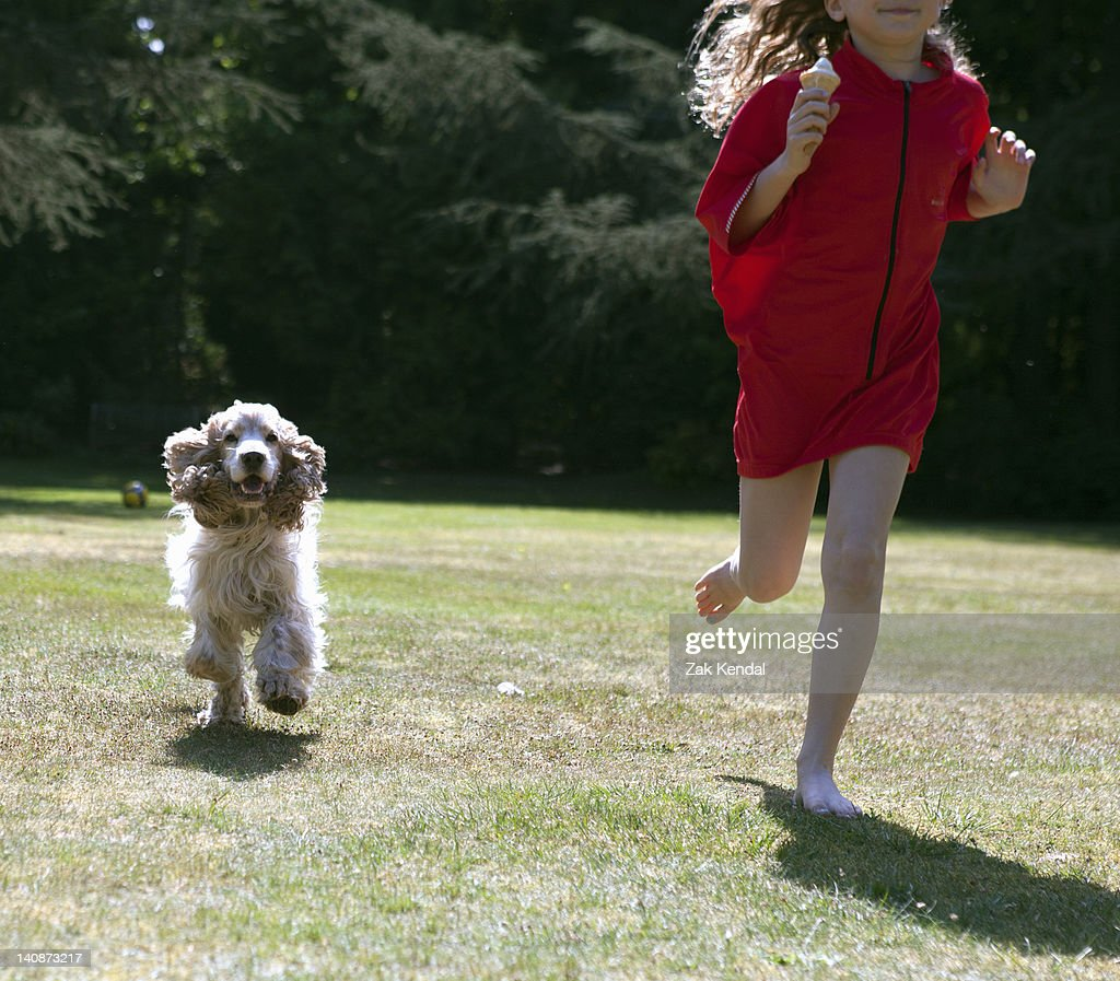 Girl playing with dog in backyard : Stock Photo