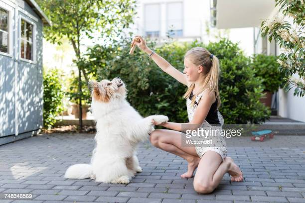 Girl playing with dog in the yard