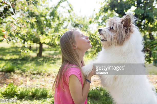 Girl playing with dog on meadow