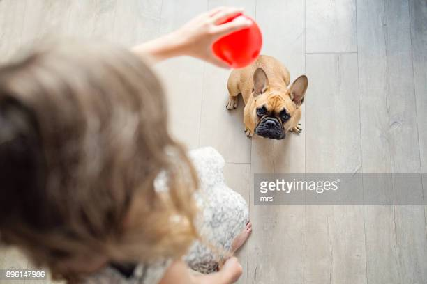 Girl playing with dog