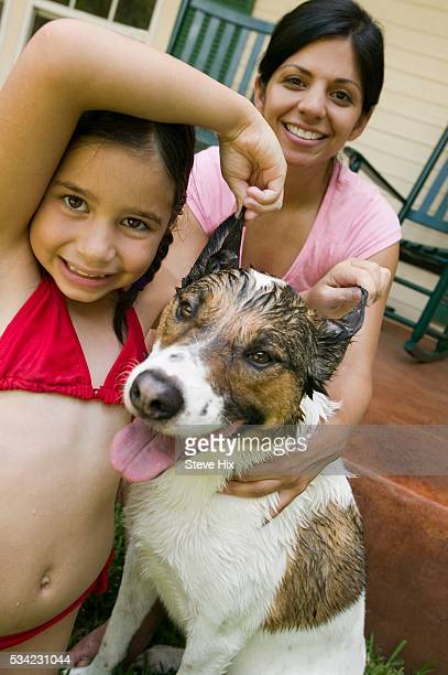girl playing with dog's ears - wet t shirt girls stock photos and pictures