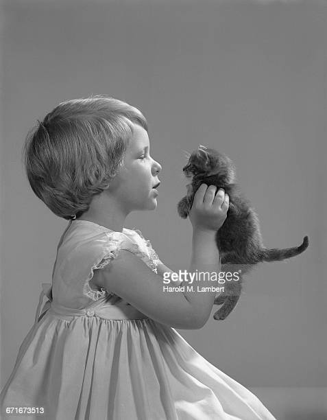 girl playing with kitten - pawed mammal stock pictures, royalty-free photos & images
