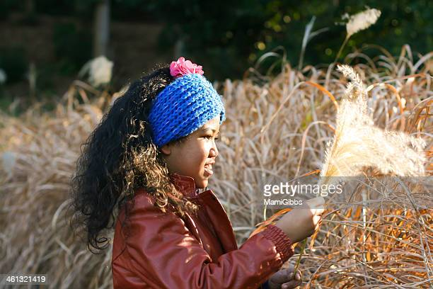 girl playing with silver grass - mamigibbs stock photos and pictures