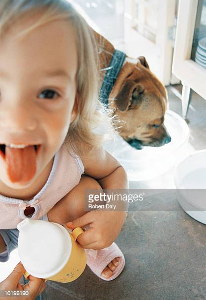 Girl (2-4) poking tongue out, dog drinking in background, close-up