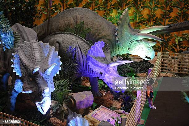 A girl poses near Triceratops replicas in the Dinosaur Adventure and Learning Experience Park at Tunjungan Plaza on September 15 2015 in Surabaya...