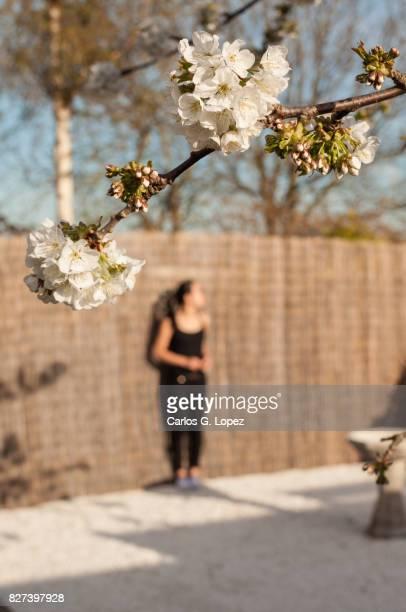 Girl prepares for yoga on Zen style garden