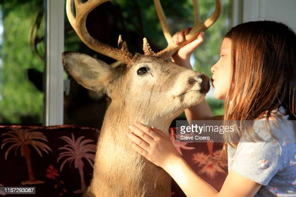 girl pretending with taxidermy deer head - dead girl stock pictures, royalty-free photos & images
