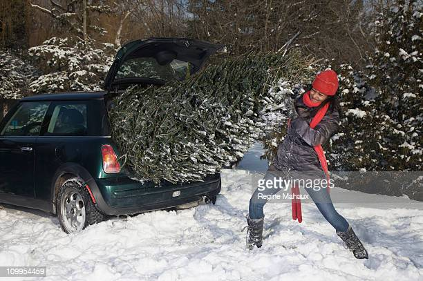 girl pushing a christmas tree in a small cacr - legs spread open stock photos and pictures