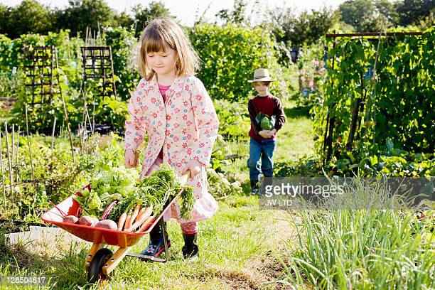 Girl pushing wheelbarrow with vegetables, portrait