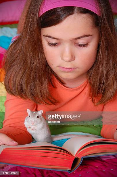 girl reading with her pet gerbil - gerbil stock photos and pictures
