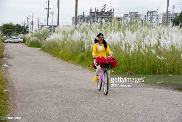 Girl rides a bicycle on the road along a catkins field in Dia Bari. Dia Bari is the most popular attractive destination for tourists in Dhaka. It is...