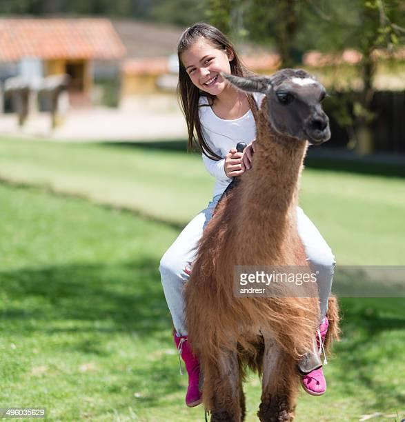 fille équitation un lama - lama photos et images de collection