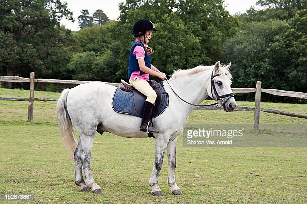 girl riding grey pony - riding hat stock pictures, royalty-free photos & images