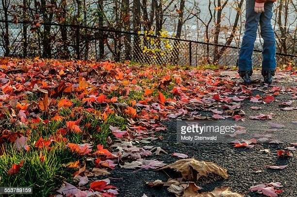 A girl rollerblades in the leaves at Pittsburgh PA. during the fall