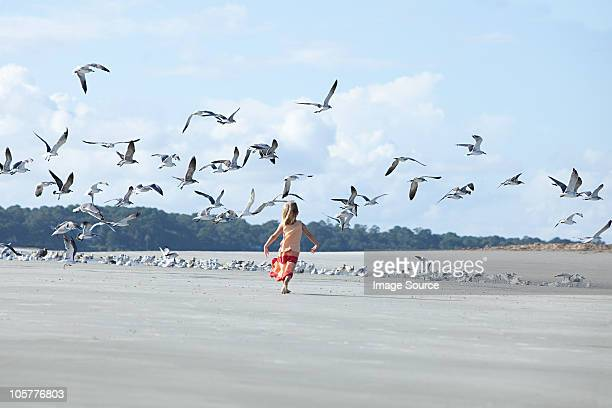 girl running on beach amongst seagulls - hilton head stock pictures, royalty-free photos & images