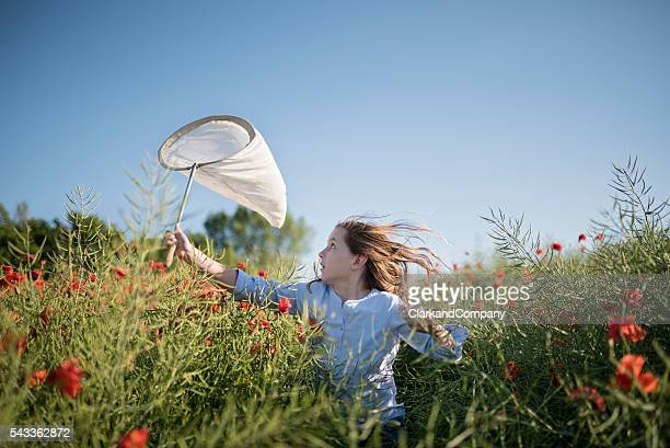 girl running through a field trying to catch insects - denmark stock pictures, royalty-free photos & images
