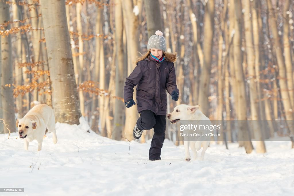 Girl running with labradors in forest : Stock-Foto