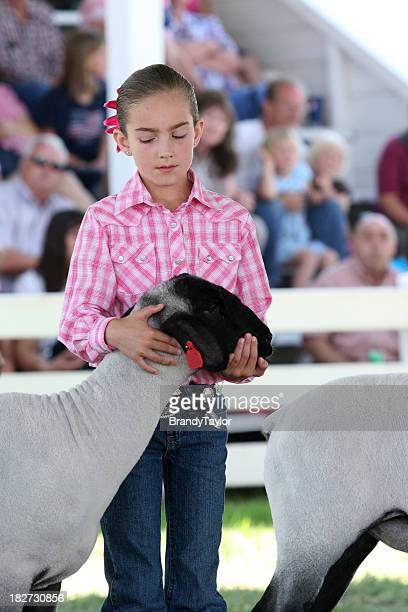 girl showing her lamb at the county fair - livestock show stock pictures, royalty-free photos & images