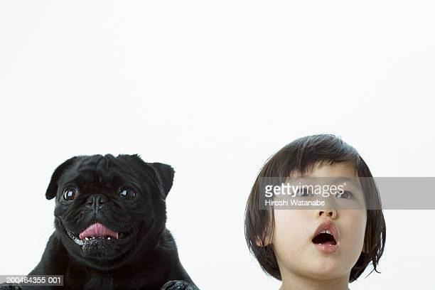 Girl (2-4) singing beside pug, looking up