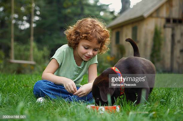 Girl (4-6) sitting in grass, watching puppy eat from bowl