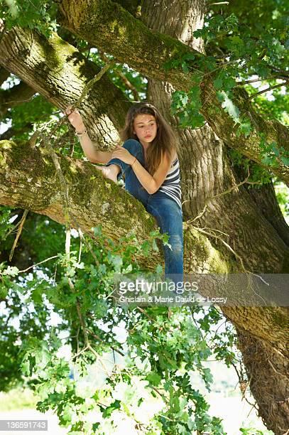 Fille assise à arbre