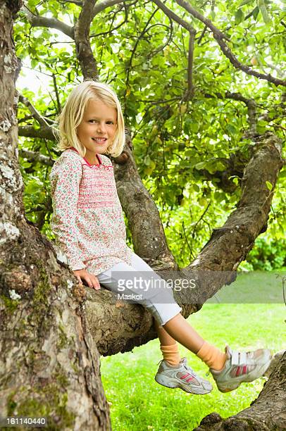 girl sitting in tree - thick girls stock photos and pictures