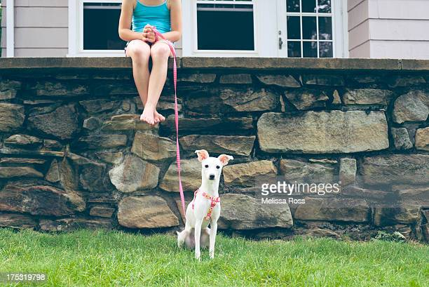 Girl sitting on a high wall with her dog.