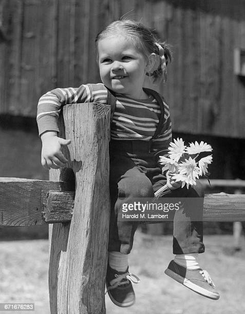 girl sitting on fence and holding flower  - {{relatedsearchurl(carousel.phrase)}} stock pictures, royalty-free photos & images