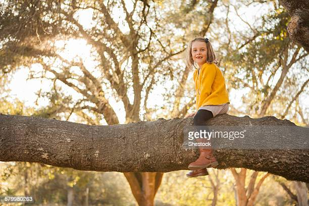 girl sitting on tree branch in park - girl with legs spread stock photos and pictures