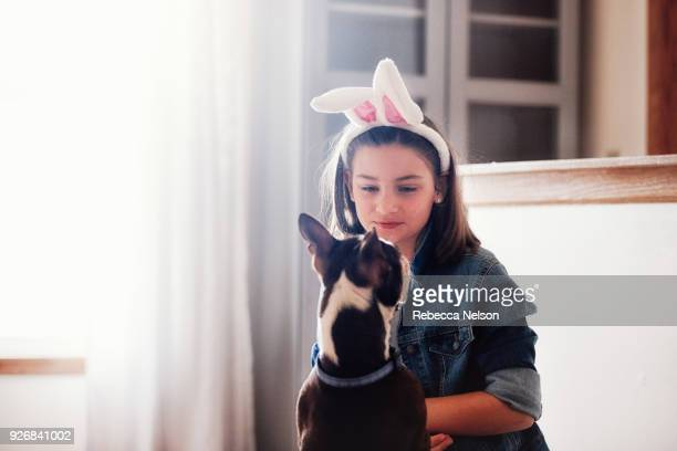 girl sitting with dog, indoors, girl wearing easter bunny ears - dog easter stock pictures, royalty-free photos & images