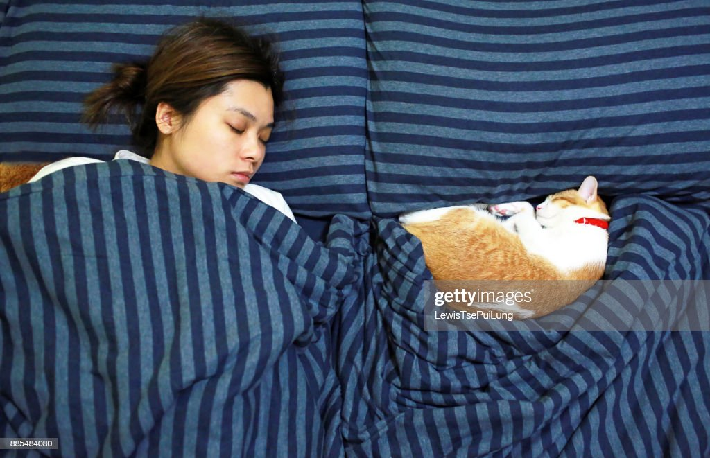 girl sleep with her ginger cat : Stock Photo