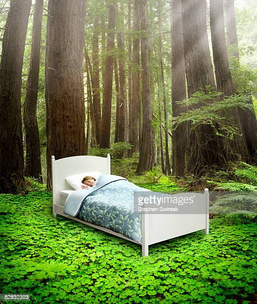Girl sleeping in a bed in a redwood forest.