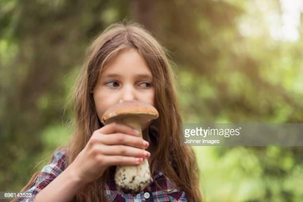 girl smelling mushroom - faro sweden - fotografias e filmes do acervo