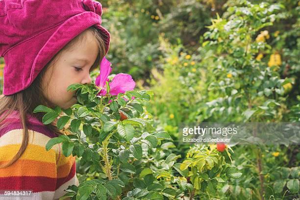 Girl smelling rosehip flower