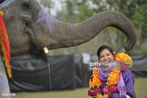 A girl smiles as elephant offering flower garland towards her at Sauhara Chitwan Nepal on Wednesday December 28 2016