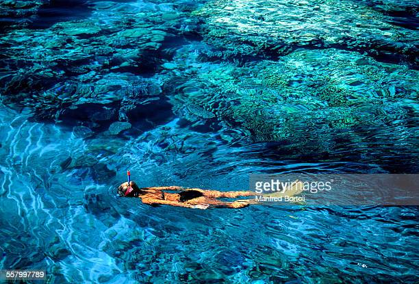 A girl snorkeling close a reef on Red Sea